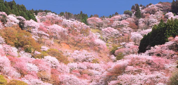 Seki mountain